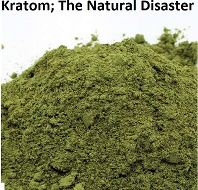Kratom; The Natural Disaster By: Dr. Michael Harbison MS, MCS-P, CCCPC